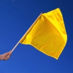 Yellow Flag: Caution